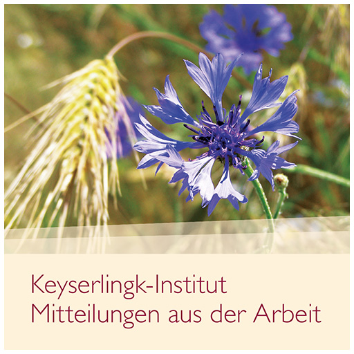 Broschüre: Keyserlingk Institut
