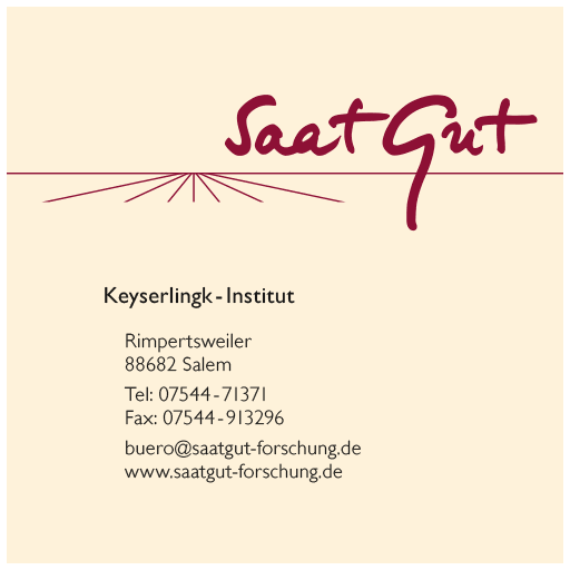 CI Relaunch: Keyserlingkinstitut